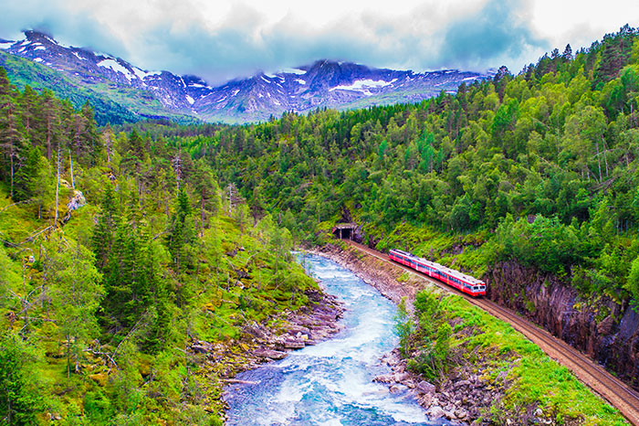 norway-bergen-to-oslo-train