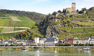 rhine-valley-boat-tour-germany
